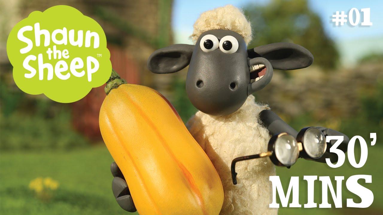 Những Chú Cừu Thông Minh – Tập 1 [30 phút]