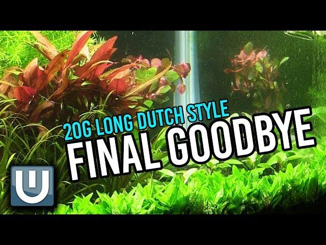 20g Dutch Style Tank | The Final Goodbye