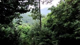 Relaxing Nature Meditation - Summer Mountain Thunderstorm