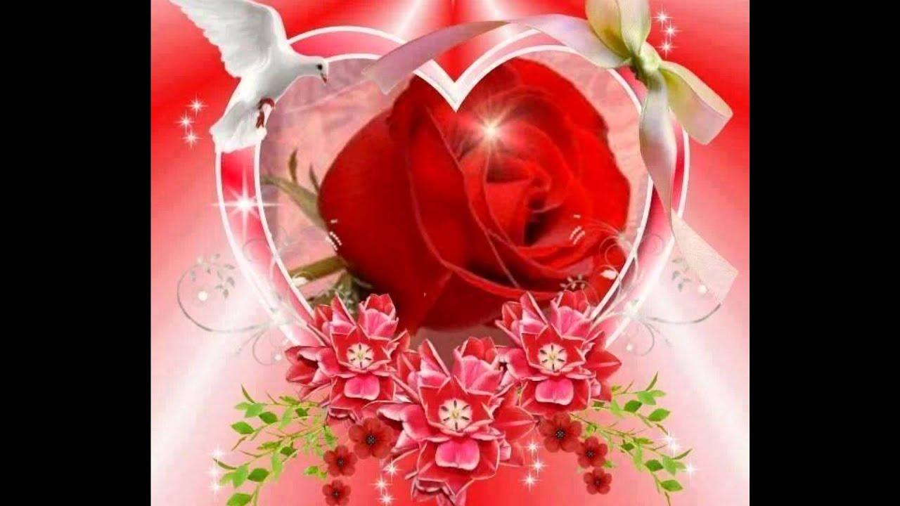 para ti el hombre de las mil rosas youtube