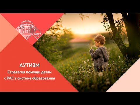 Е. А. Сильянов. Актуальные проблемы и перспективы развития... 29/05/2017