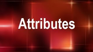 MicroStrategy - Attributes - Online Training Video by MicroRooster