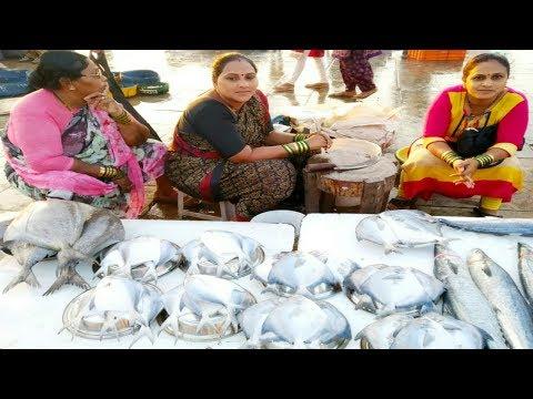 VERSOVA FISH MARKET | Fish Market In Mumbai