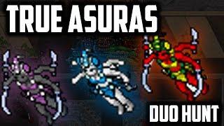 TRUE ASURAS DUO HUNT - EK 931 ED 625 - 6KKH