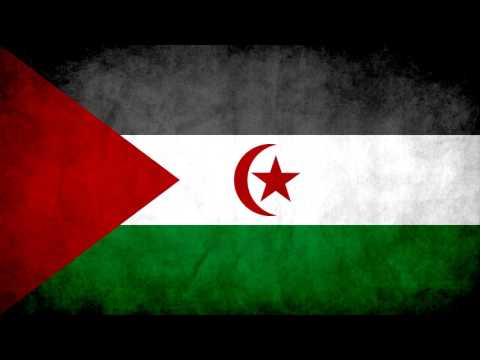 One Hour of Sahrawi Liberation Music