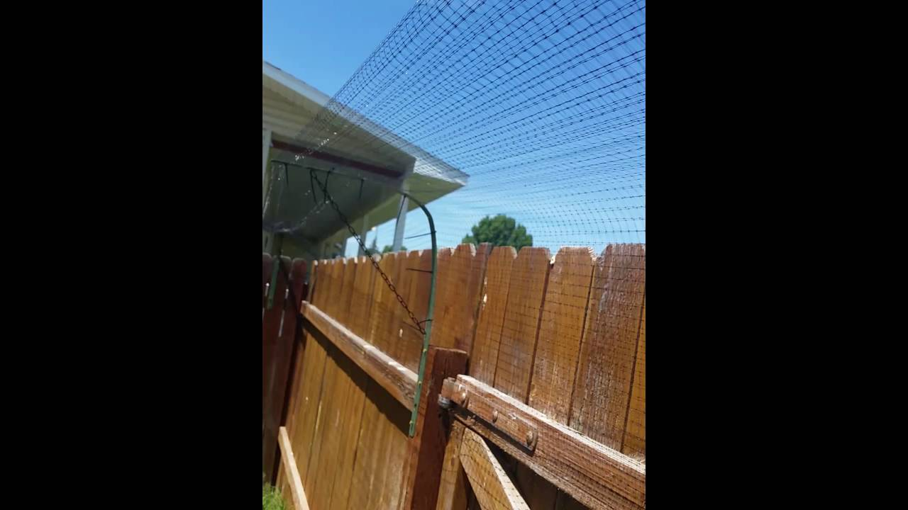 our cat fence