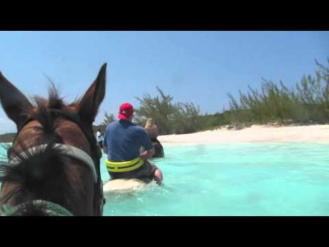 Horseback Riding In Half Moon Cay