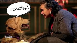 لايڤ من الدوبلكس الموسم السادس   الأبلة مع الكلاب وأصحابهم   الحلقة الثالثة عشر (ج١)