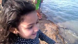 على شاطئ بحيرة سليمان - النوبارية