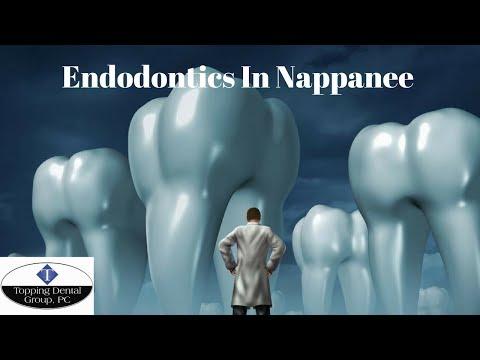 Endodontics In Nappanee