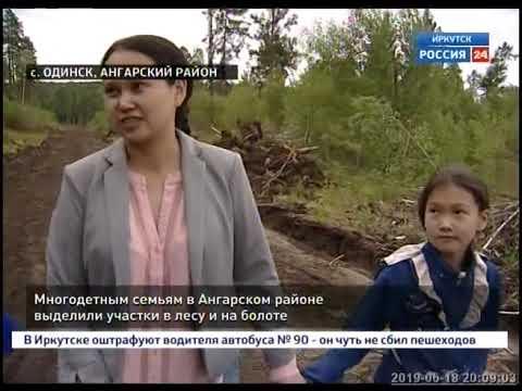 Многодетным семьям в Ангарском районе выделили участки в лесу и на болоте
