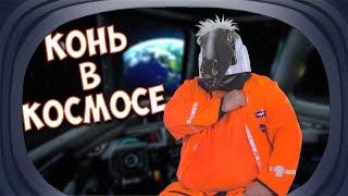 Конь космонавт или что нужно женщинам / Кони шоу выпуск № 20 подборка приколов