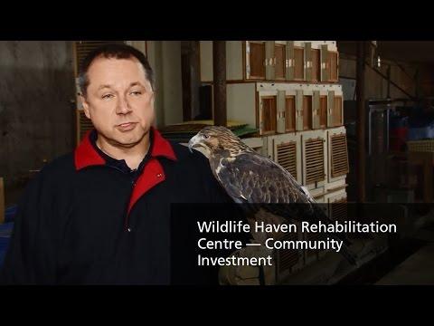 TransCanada — Wildlife Haven Rehabilitation Centre — Community Investment