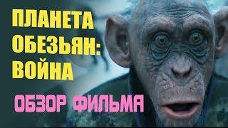 Рецензия на фильм Планета обезьян война - обзор фильма