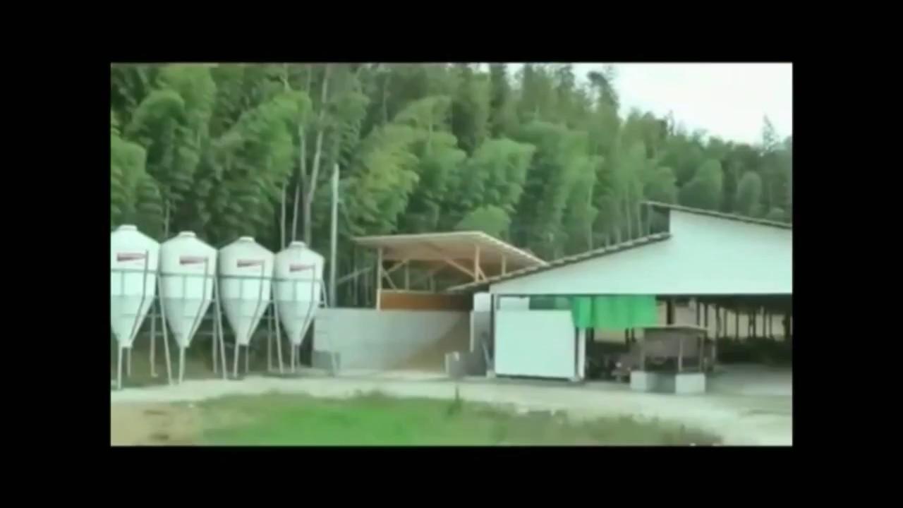 Isoda Farm