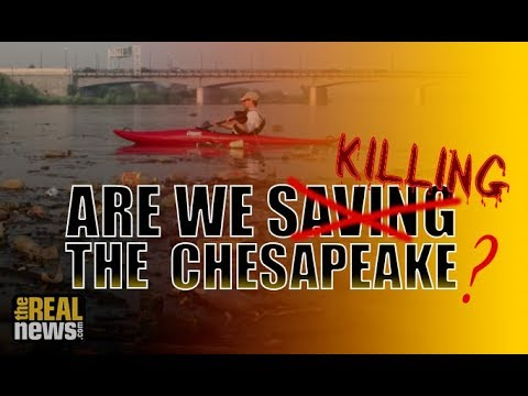 'Inconvenient Truth': Without 'Bold Measures' the Chesapeake Bay Is in Dire Trouble (Pt 1/2)