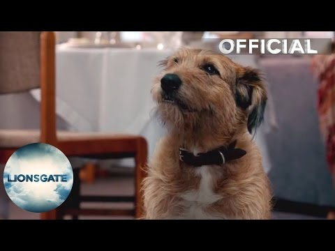 "Absolutely Anything - Clip ""Dog Talking"" -  In Cinemas August 14"