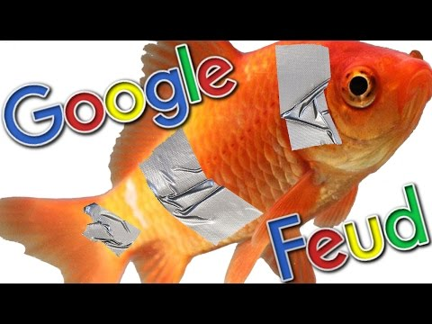 STOP DUCT TAPING FISH - Google Feud |