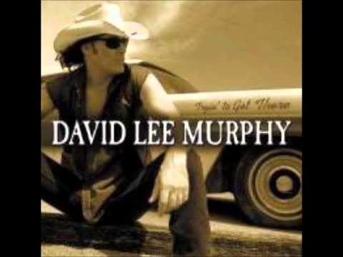 Party Crowed - David Lee Murphy