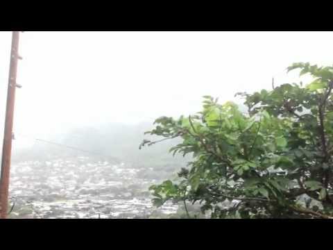 Manoa in the rain
