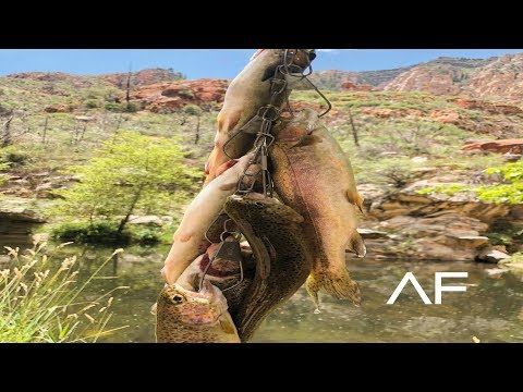 CATCHING RAINBOW TROUT AT OAK CREEK SEDONA!!! ARIZONA FISHING