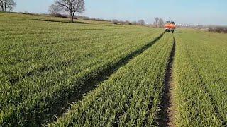Buğday Gübreleme 2 ve Farkları