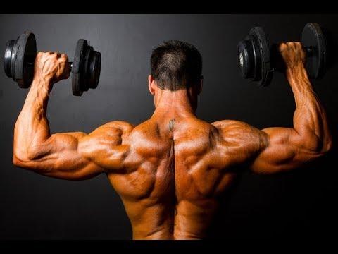 Back workout – Tổng hợp các bài tập lưng xô hiệu quả – Gym Motivation