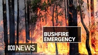 Up To 30 Homes Destroyed As Northern Nsw Burns | Abc News