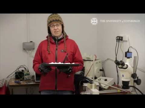 Jane Blackford: Ice and snow mechanics