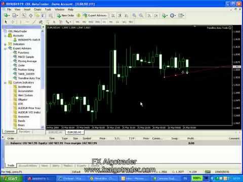 Forex trend scanner mt4