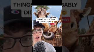 THINGS YOU PROBABLY DIDNT KNOW!! (Pt 183) #shorts