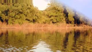 видео Чарыш | Река Чарыш