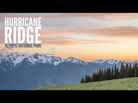 Hurricane Ridge - Olympic National Park - Travel Photography