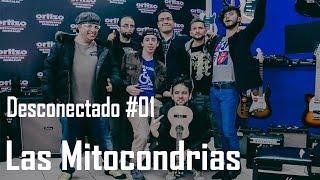 desconectado-01-las-mitocondrias