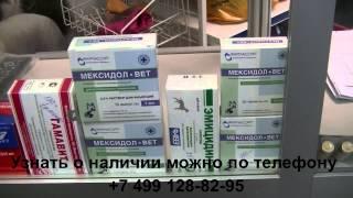 Ветеринарная клиника Бемби. Наша  аптека март 2015(Новый видеоролик о наличии препаратов в нашей аптеке. Наша аптека расположена по адресу Москва, ЮЗАО, ул...., 2015-03-21T05:34:32.000Z)