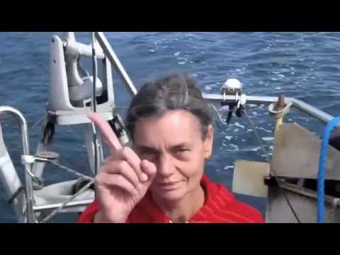 Sailing s/v Blaatunge. Trine and me 2016. Video 60