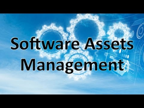 What is a Software Asset Management Audit?