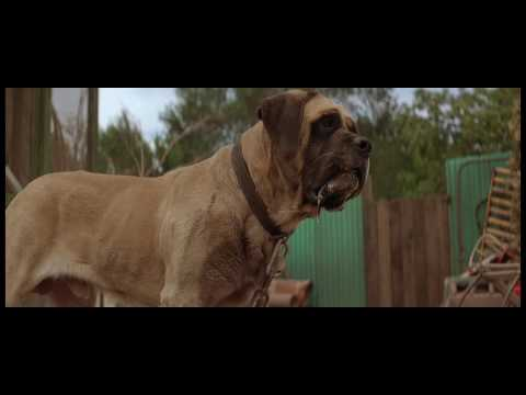 Challenging the Beast Scene - The Sandlot