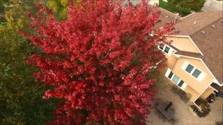 Sioux Falls Colors not to be missed 4k Drone