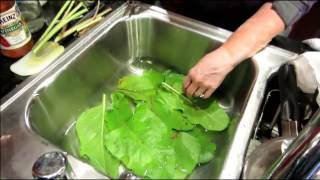 All Natural Homemade Fruit & Vegetable Wash Recipe