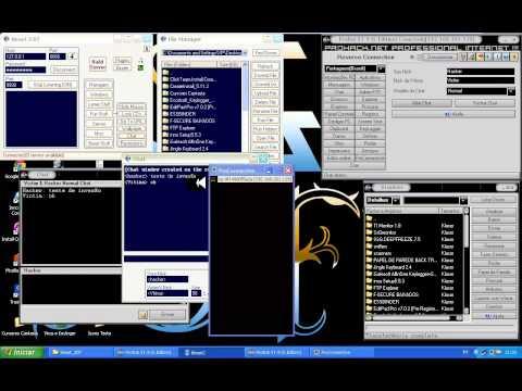 ProRat V1.9 e Beast 2.07