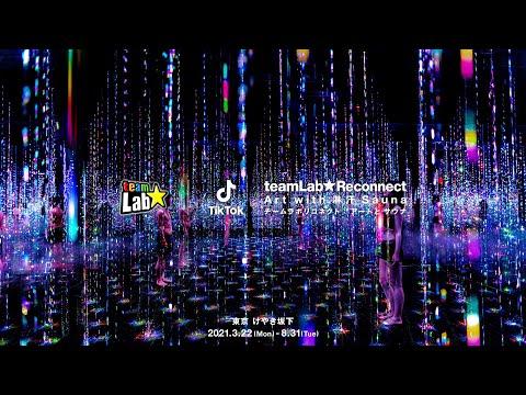 チームラボ & TikTok, チームラボリコネクト:アートとサウナ / TikTok teamLab Reconnect : Art with Rinkan Sauna (60 sec)