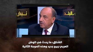 الشناق: ما يحدث في الوطن العربي ربيع جديد وهذه الموجة الثانية