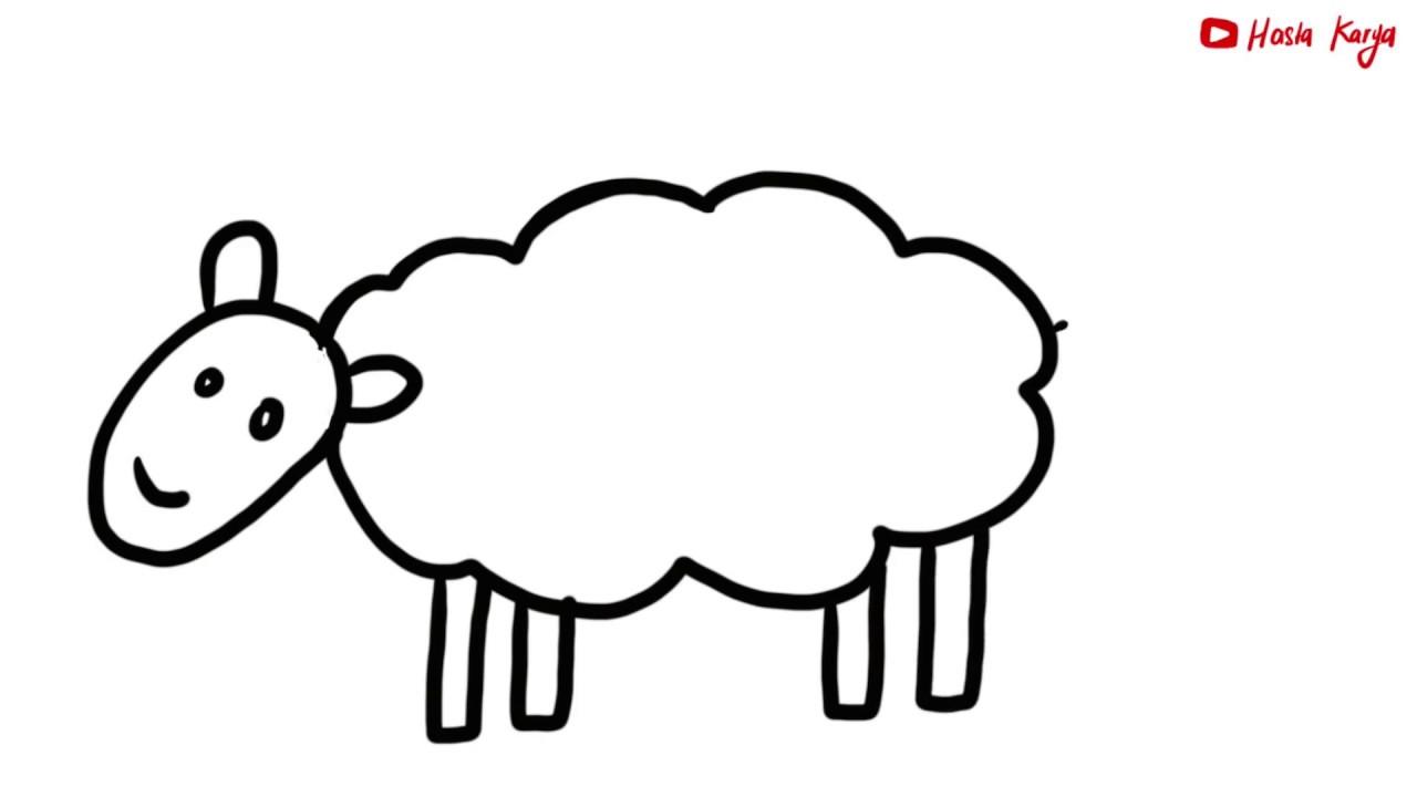 Menggambar Mewarnai Hewan Ternak Kambing Domba Untuk Anak Belajar Dirumah Youtube