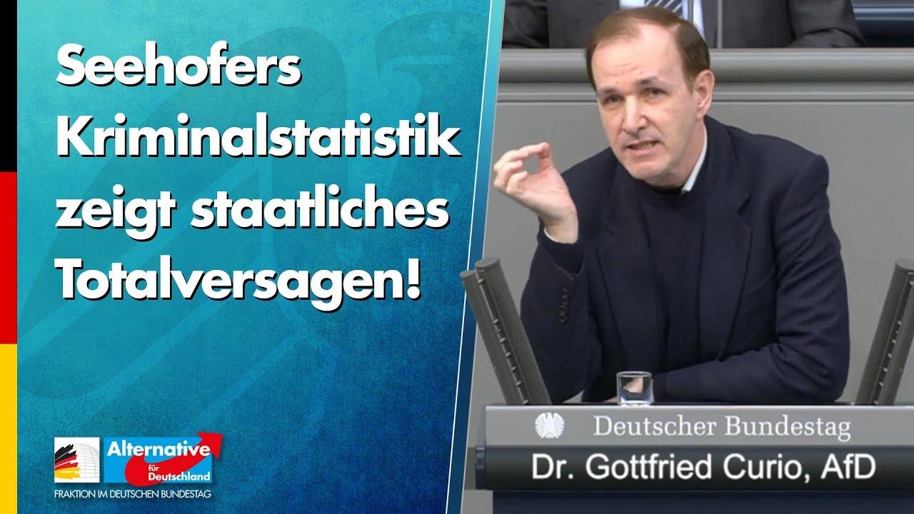 Seehofers Kriminalstatistik zeigt staatliches Totalversagen! - Gottfried Curio - AfD-Fraktion