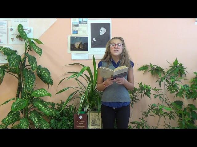 Изображение предпросмотра прочтения – АнгелинаШашкова читает произведение «К читателю; Любовь» И.С.Тургенева