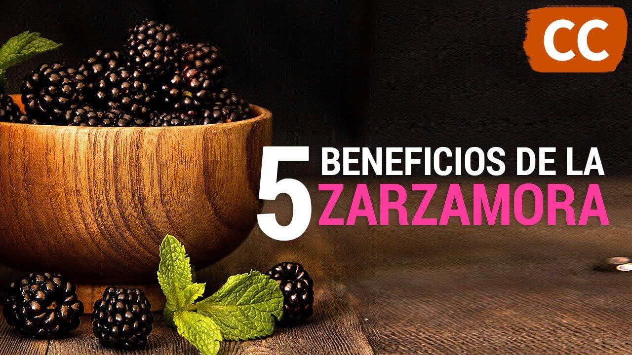 5 Beneficios de las Zarzamoras | Ciencia de la Comida