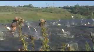 Рыбалка в  Ставропольский край.mp4 с Спасское