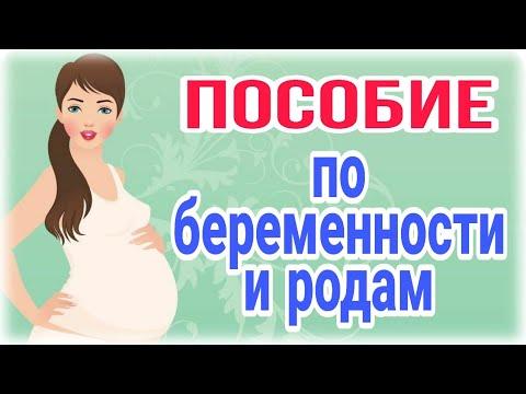 Пособие по беременности и родам/Новинка 2020 г.