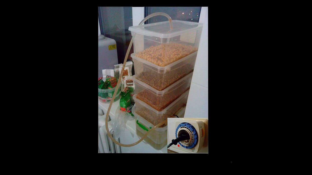 Зеленая гречка для проращивания в тольятти, продажа сырой гречки в тольятти купить в и-мне тольятти.
